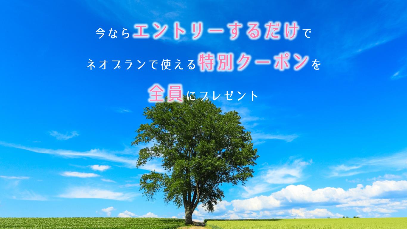 ネオプラン限定キャンペーン1万円分の旅行券を毎月1名様にプレゼント!